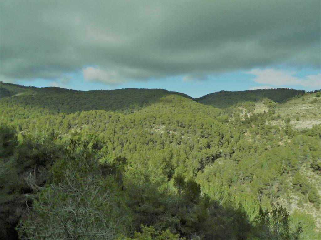 Imatge parcial dels Plantadets de Xixona des de la Carrasqueta a la altura de la Penya Redona./FOTO BERNAT SIRVENT
