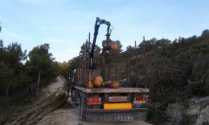 Un camión de la empresa de Moixent cargando troncos esta misma mañana en los montes de Vivens./FOTO MADE IN JIJONA