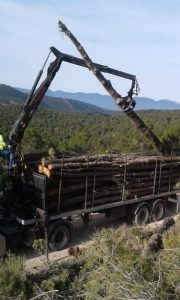 Un camión grúa cargando, esta misma mañana, troncos de pino en los montes de Vivens Carrasqueta de Xixona./FOTO MADE IN JIJONA