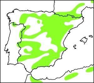 Zonas en las que habita el águila real, entre ellas toda la sierra de Jijona.