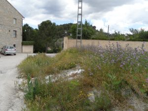 Mala herba a un carrer de la part alta de la pedania de La Sarga, el diumenge./FOTO MADE IN JIJONA