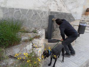 Un veí del llogaret de La Sarga apreta l'aixeta de la font pública de la que no ix ni gota d'aigua, a la plaça./FOTO MADE IN JIJONA