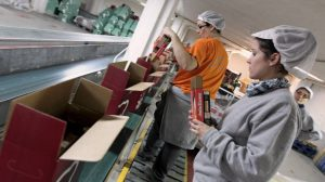 Varias trabajadoras de la empresa Lotes de España, en Valencia, preparan los pedidos de cestas y lotes de Navidad. (EFE)